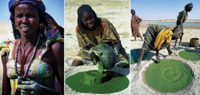 Photos by Marzio Marzot from FAO report 2004