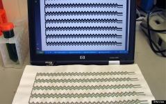 Algae Printing for the production of printable biophotovoltaic (BPV) wallpaper.